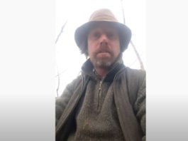 Sean Kilkenny, horses, GoFundMe, forgotten horses