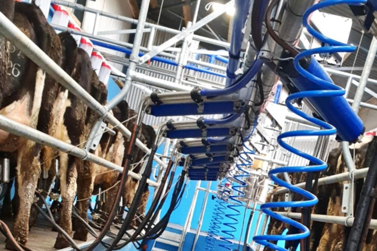 DeLaval, milking cows, relief milkers, dairy farm news