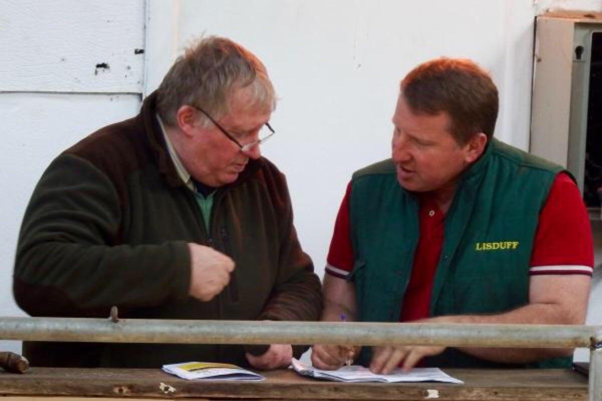 Tom Cox, livestock auctioneering, livestock auctioneer
