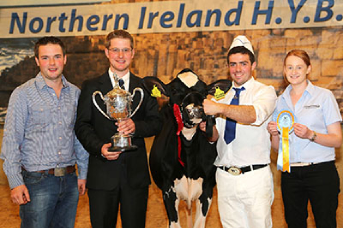 Andrew Patton, young farmer, dairy news, Holstein Friesian