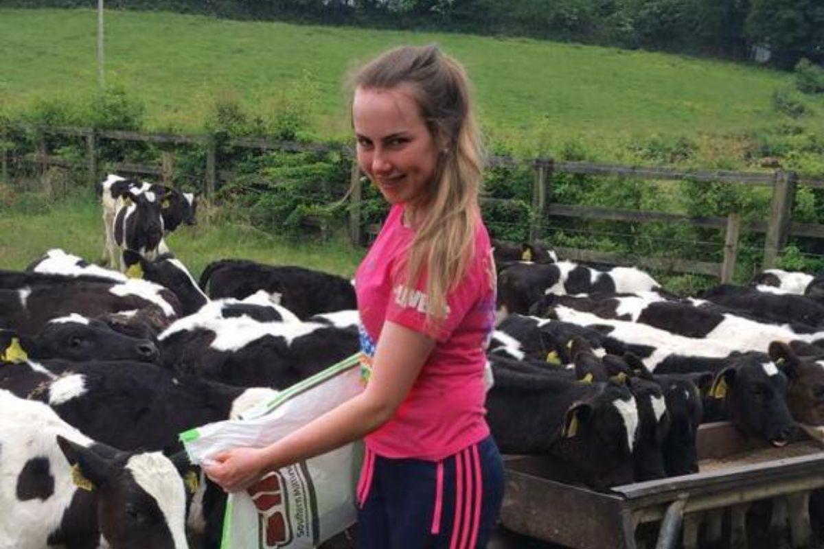 dairy calves, calf rearing, farm girl,
