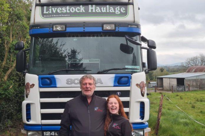Michael O'Brien Livestock Haulage, farming news, livestock haulage