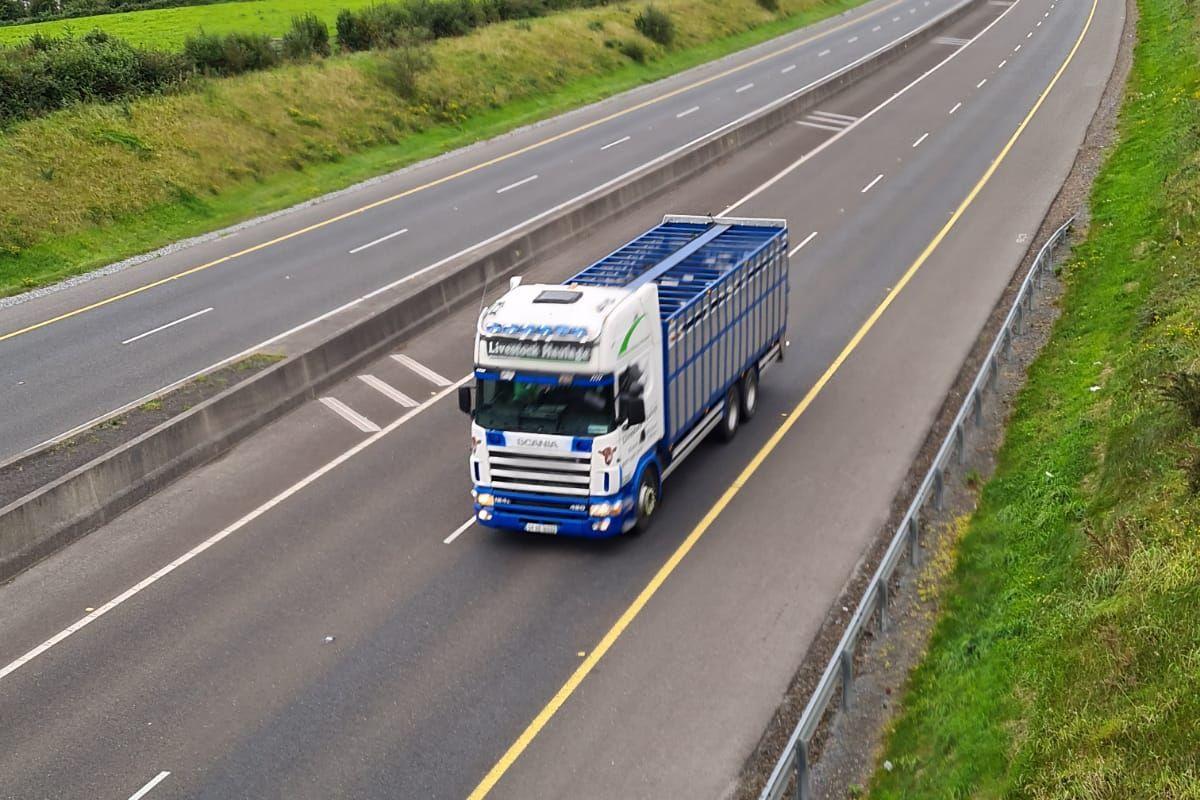 Michael O'Brien Livestock Haulage, haulage, cattle, farming news