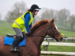 Manon Varenne, equine, horse courses,
