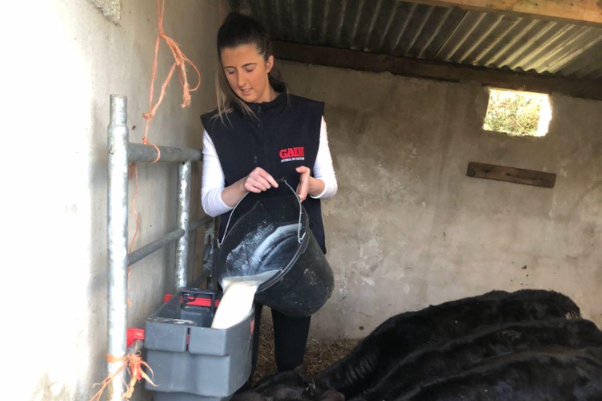 women in ag, agri careers, farm girl, calf rearing