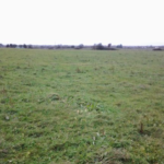 """""""good quality"""" farmland at Lecarrow on the outskirts of Craughwell in County Galway."""