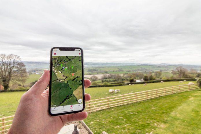 Livestock Count, farming news, sheep farming, farm news