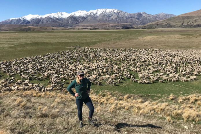 Rebecca Adams, farm girls, women in ag, sheep, sheep farming