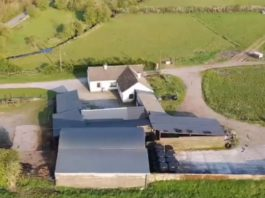 farms for sale, farming property, Longford, farming news