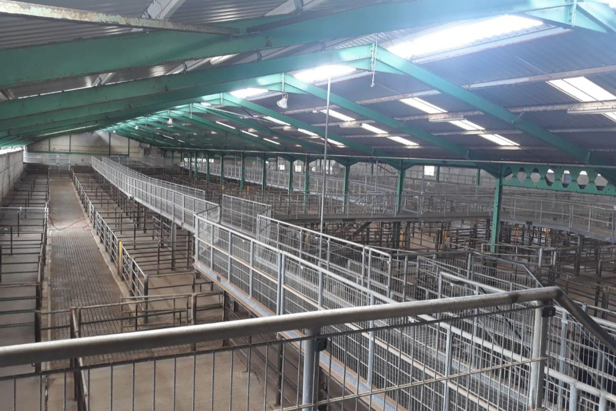 Clare Marts, cattle prices, mart reports, mart prices, farming news, Martin McNamara, Mart managers