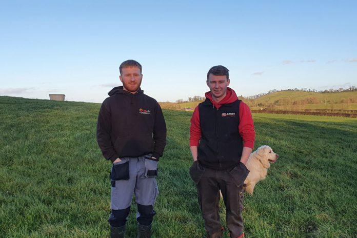 dairy farming, dairy farmer, farming