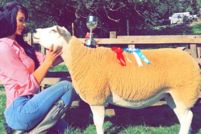 Leah Dewhirst, sheep farmer, sheep, sheep farming, farm girls, women in agriculture, women in farming, farm life, farming news