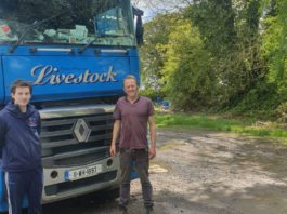 Livestock Haulage, livestock haulier, farming news, Roscommon, cattle prices, sheep farming, beef farming