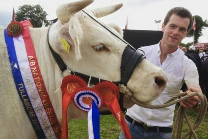 Martin Ryan, Thurles Mart, beef prices, farming news, Charolais cattle