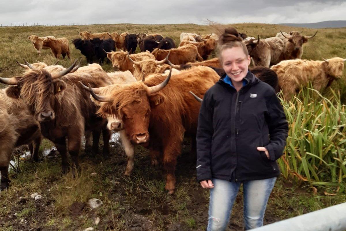 pedigree Highland breeder, farm girls, women in ag, women in farming, Highland cattle, Scotland,