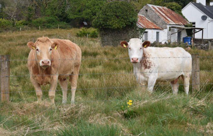 land, farming news, legal advice,