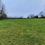 properties for sale, farms for sale, Mayo, farming news, land for sale