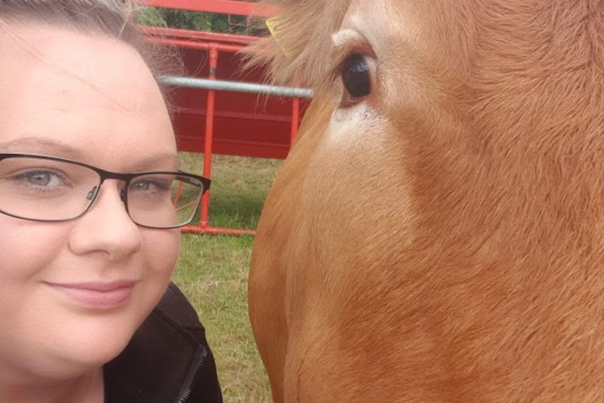 Hitchetts Hill Limousins, Limousin cattle, farming news, suckler farming, farm girls