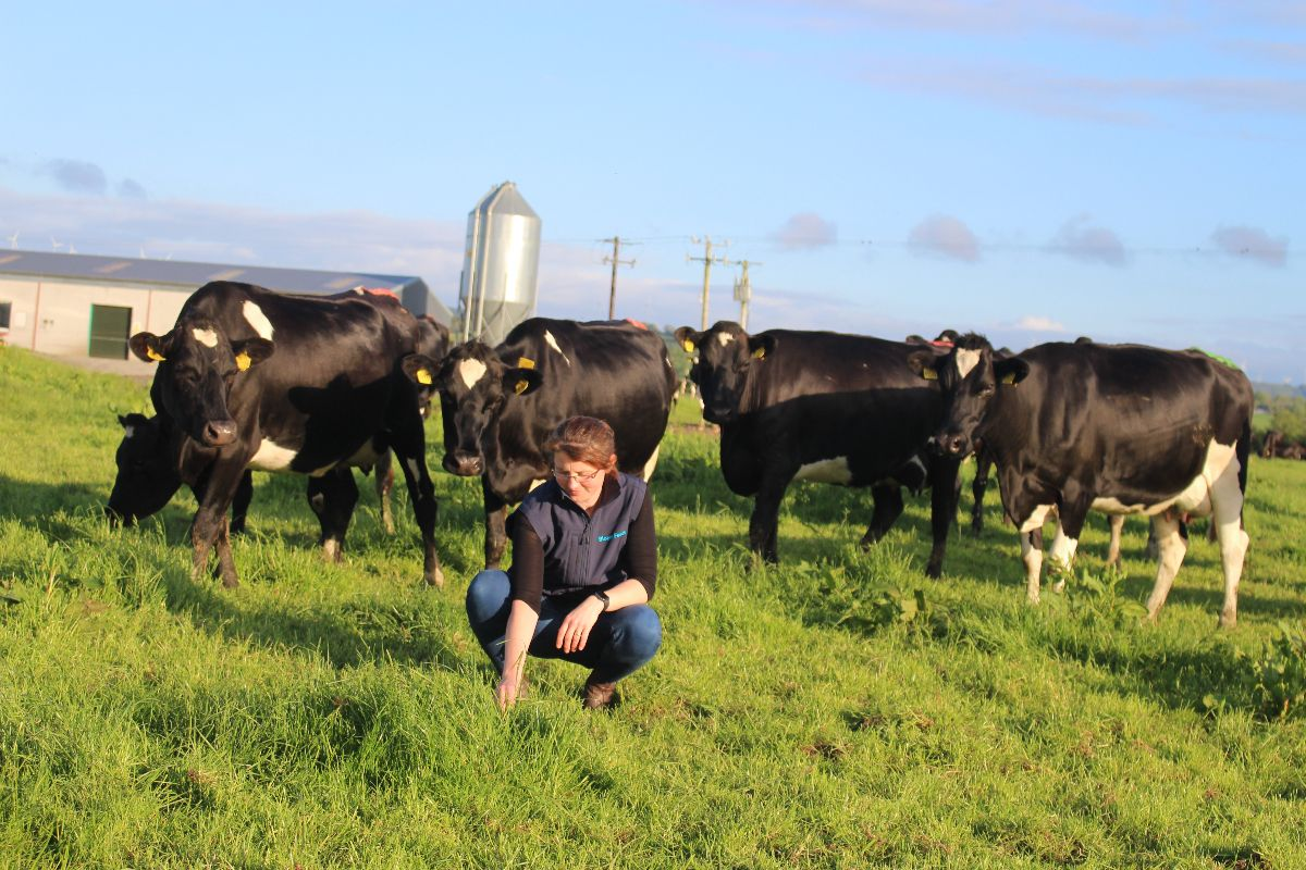 farm girls, women in agriculture, women in farming, dairy news, discussion group facilitator