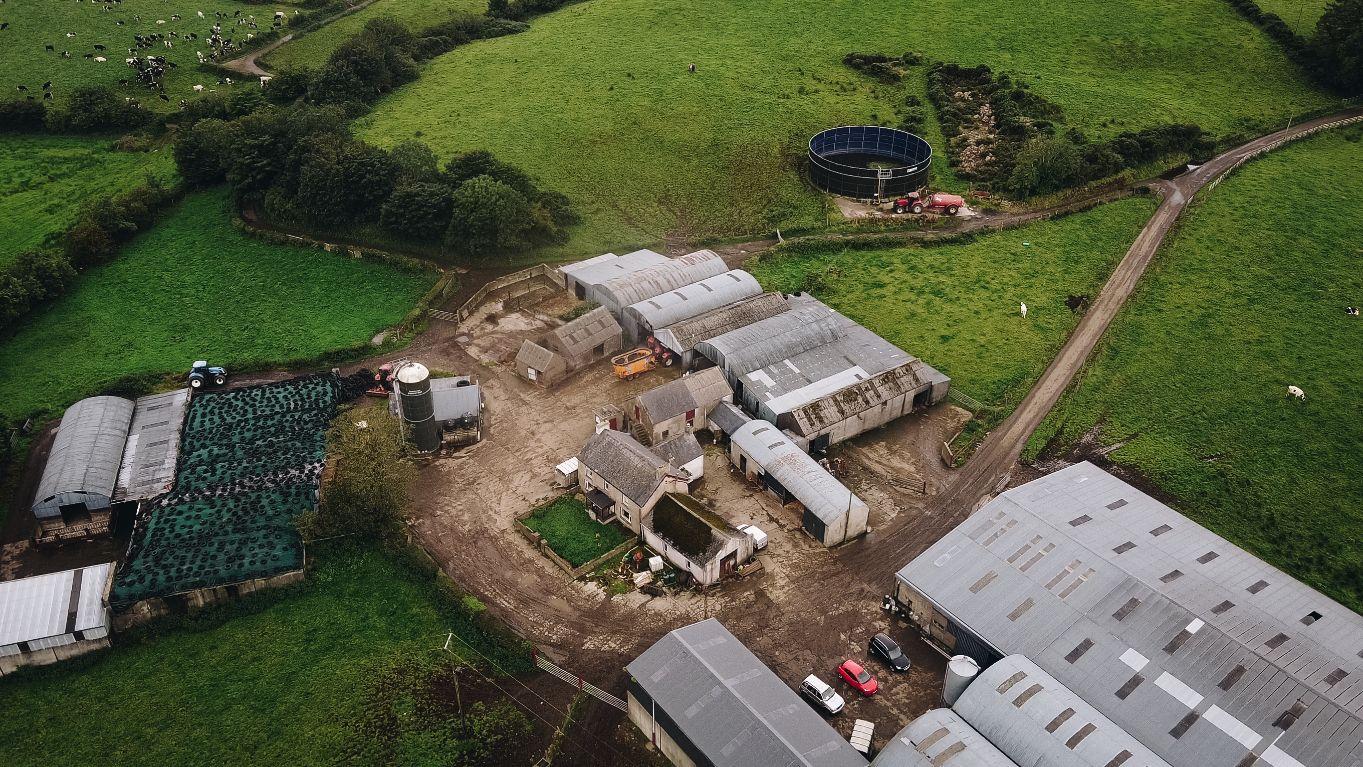 Letterloan Farm, dairy farming, dairy news, dairy cows, Northern Ireland