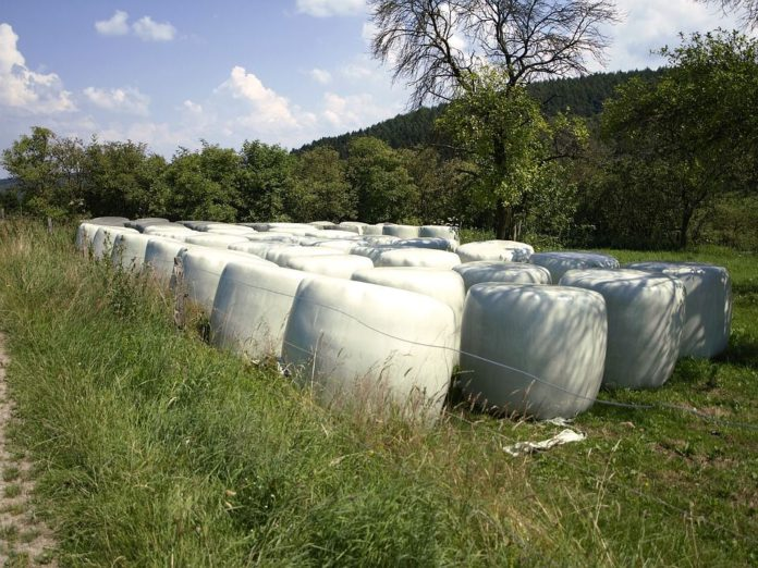 silage, silage bales