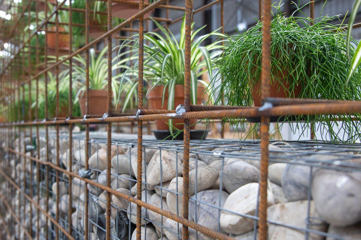 Solas Eco Garden Centre, eco garden, farming news