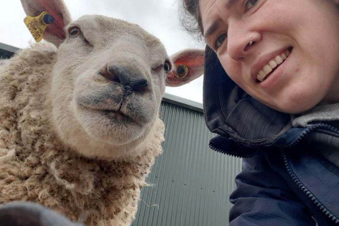 farm girls, women in farming, women in agriculture, sheep, sheep farming,