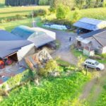 farms for sale, farm for sale in Laois, farming news, property,