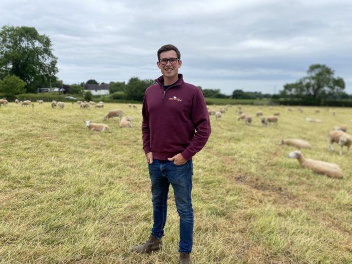 Cowley Hill Farm, young farmers, sheep farming, sheep farmers