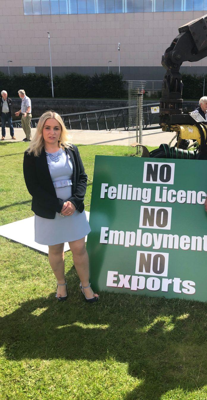 Carol Nolan, farming news, forestry sector