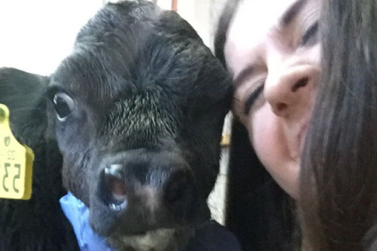 Waterford Institute of Technology, farm girls, women in ag, women in farming, farming news