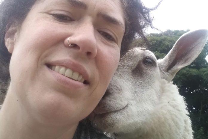 Clodagh Hughes, sheep, sheep farming, sheep farmers,