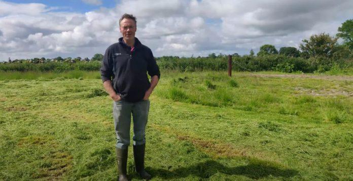 dairy news, dairy cows, dairy farming, dairy farmers