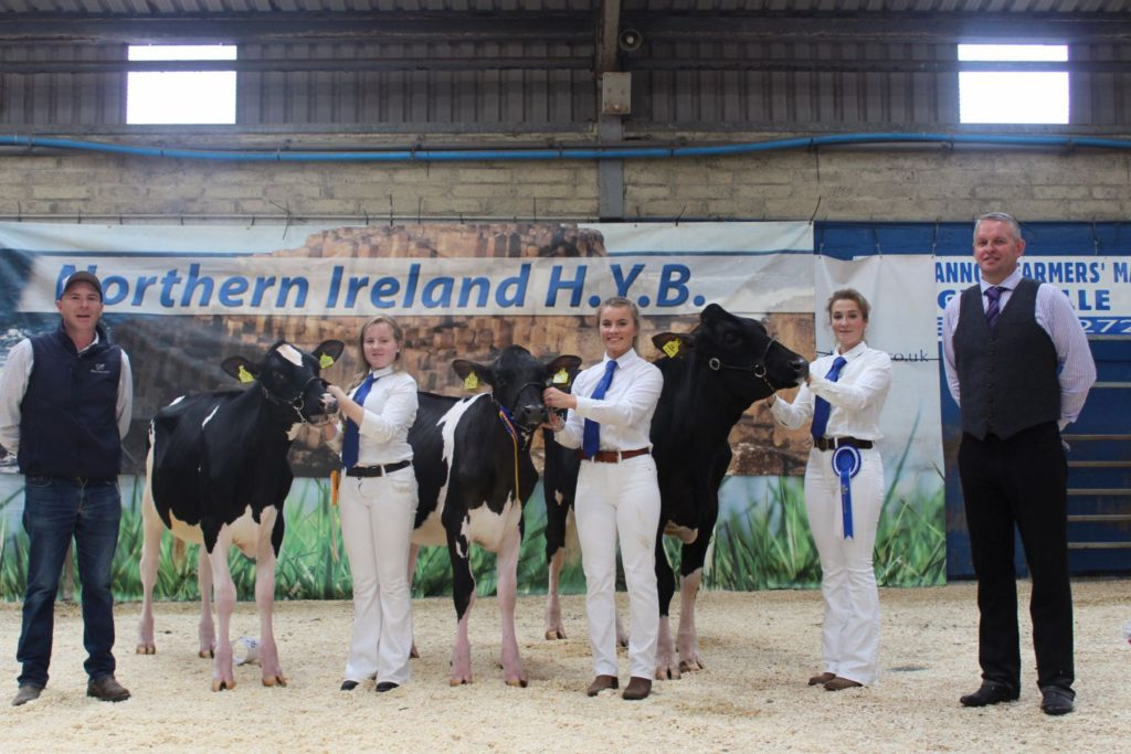 Results from 18th Multi-Breed Dairy Calf Show where a record-breaking 110 Holstein calves took to the show ring at Dungannon Farmers' Mart.