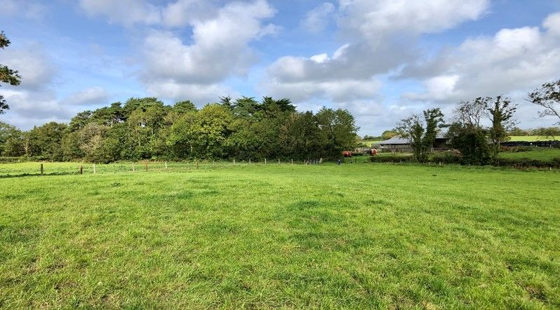 Jordan Auctioneers, land in Kildare, farms for sale,