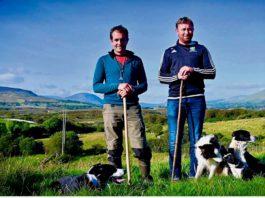 The Newport Shepherds, farming news, sheepdog, sheepdog trainers