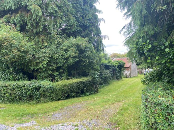 Newtown Donore Cottage, cottage for sale in Kildare, properties, Ireland