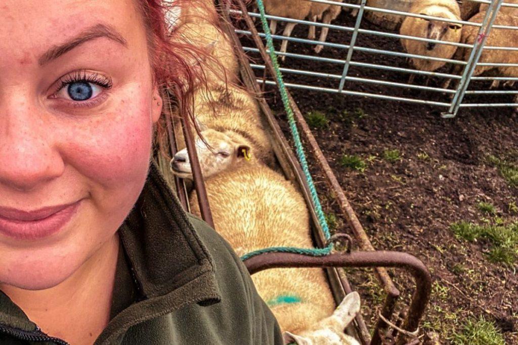 Micklewaite flock, farming news, UK, first-generation farmer,