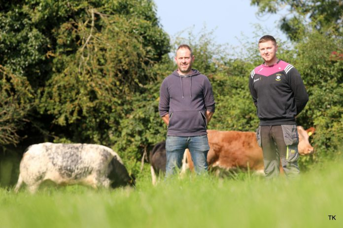 """Their first annual sale of """"super quality"""" maiden heifers takes place on Saturday, October 9th at GVM Tullamore Mart, Co Offaly at 1 pm."""