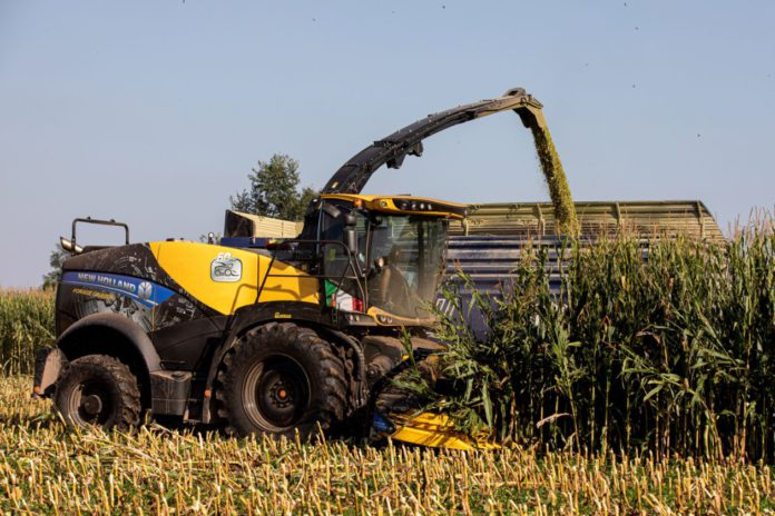 """New Holland is celebrating the 60th anniversary of its self-propelled forage harvester, with a special edition of its FR Forage Cruisers. The machines will bear a distinctive anniversary livery featuring a 60th-anniversary decal, silver swash and silver leaf to symbolise the machine's advanced technologies and """"exceptional"""" performance."""
