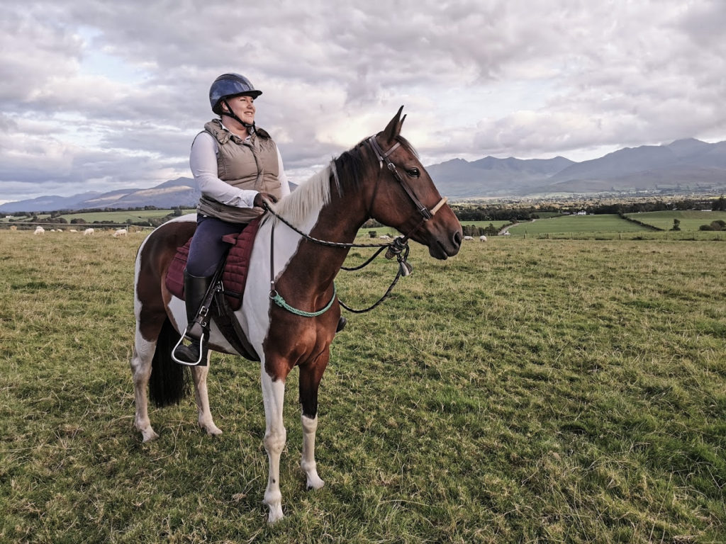 The Equine Academy - Phillippa Christie's– horses and marketing and website development. Co Kerry