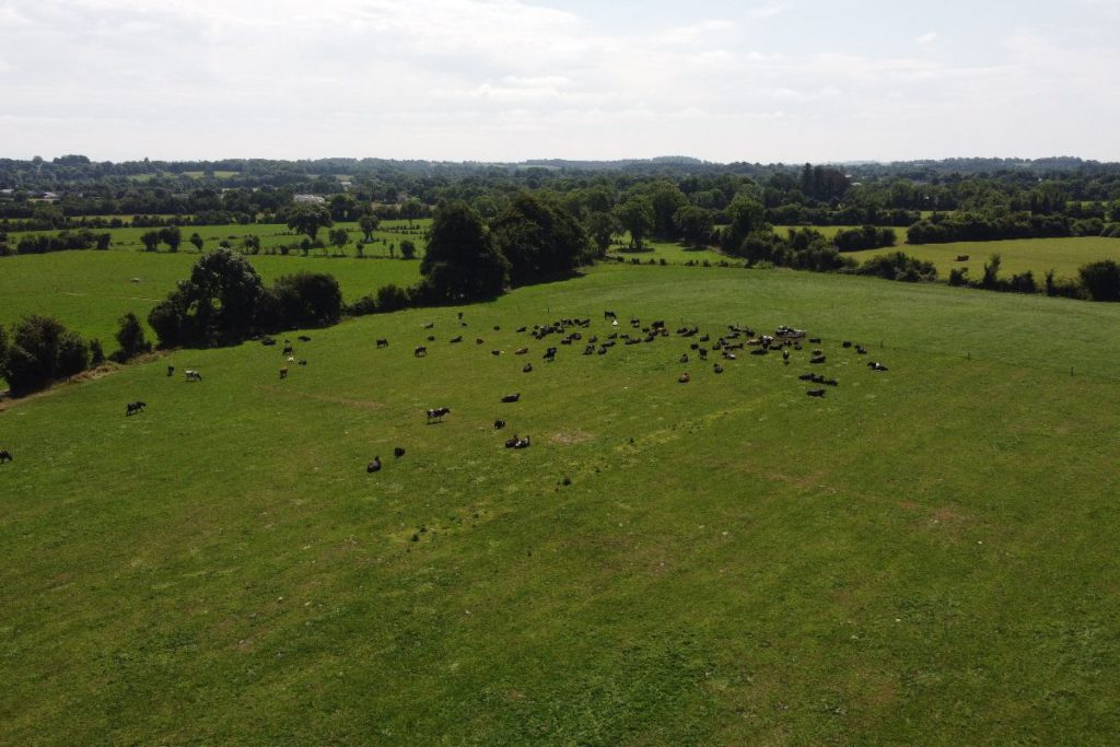 That's Farming, speaks to Iarla Hughes, a UCD Agricultural Systems Technology graduate. The Meath native discusses working for Moocall.