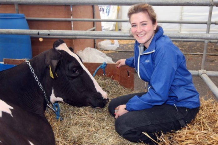 Jessica Hall, herdswoman at Printshop Holsteins (200 cows), Northern Ireland, on dairy farming, moving from the UK and being a farm girl.
