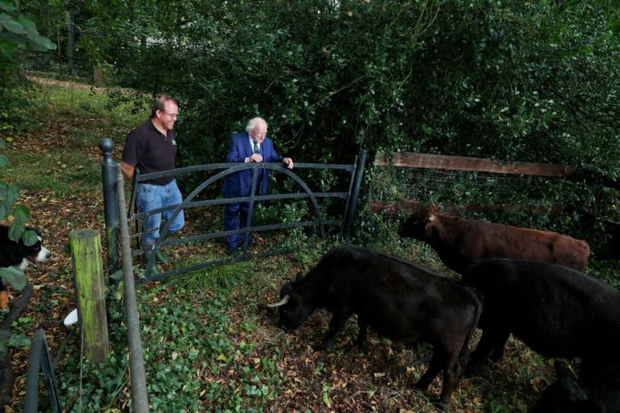 President Higgins has welcomed seven indigenous Dexter cattle to the grounds of Áras an Uachtaráin. Peter Bryans of Donabate Dexter Farm visited Áras an Uachtaráin yesterday (Monday, September 20th, 2021).