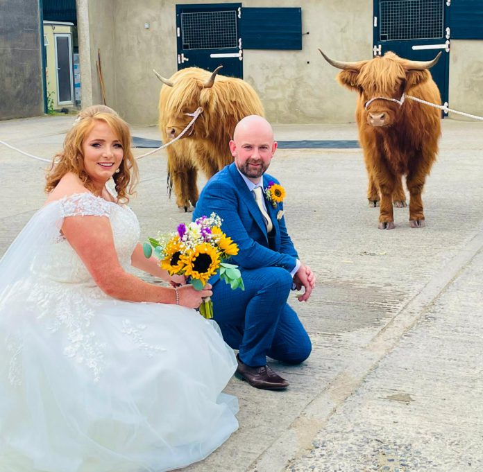 Two Highland cows from Quantock Fold stole the show at Meath farming natives, Sive Corrigan and Stephen Mulligan's wedding in Co Meath.