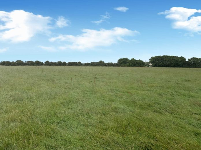 Quinn Property is guiding a circa 49-acre roadside holding in Slad, Tagoat, Rosslare, Co Wexford at €495,000. The property firm will offer the holding for sale by online auction on Tuesday, September 21st, 2021, at 4 pm in the following lots: