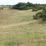 """GVM Auctioneers, has for sale, circa 54-acres of """"prime"""" agricultural land in Blacklin Little, Kilbeggan, Co Westmeath. According to the selling agent, """"what lies beneath the grazing land"""" is where quarry companies, investors and farmers may find """"added value""""."""