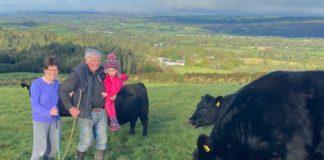 Michael O'Riordan, married to Pauline from Macroom, County Cork, are pedigree Angus breeders running the 50-cow Cooldaniel herd.