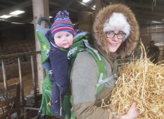 Up to 50% of UK farms face having profits wiped out within three years due to subsidy cuts. That is the stark warning Victoria Ivinson, a rural business accountancy expert and farm owner, has issued.