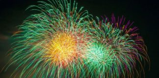 The ISPCA has urged the public not to use, buy or sell fireworks to help safeguard all animals this Halloween. The body has called on the public to take extra measures to safeguard the safety of not only domestic pets but farm animals and wildlife too.